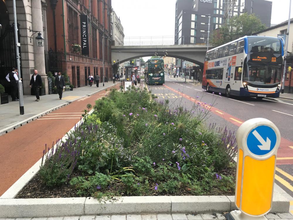 greening grey infrastructure, London (image courtesy Larissa Naylor, University of Glasgow)
