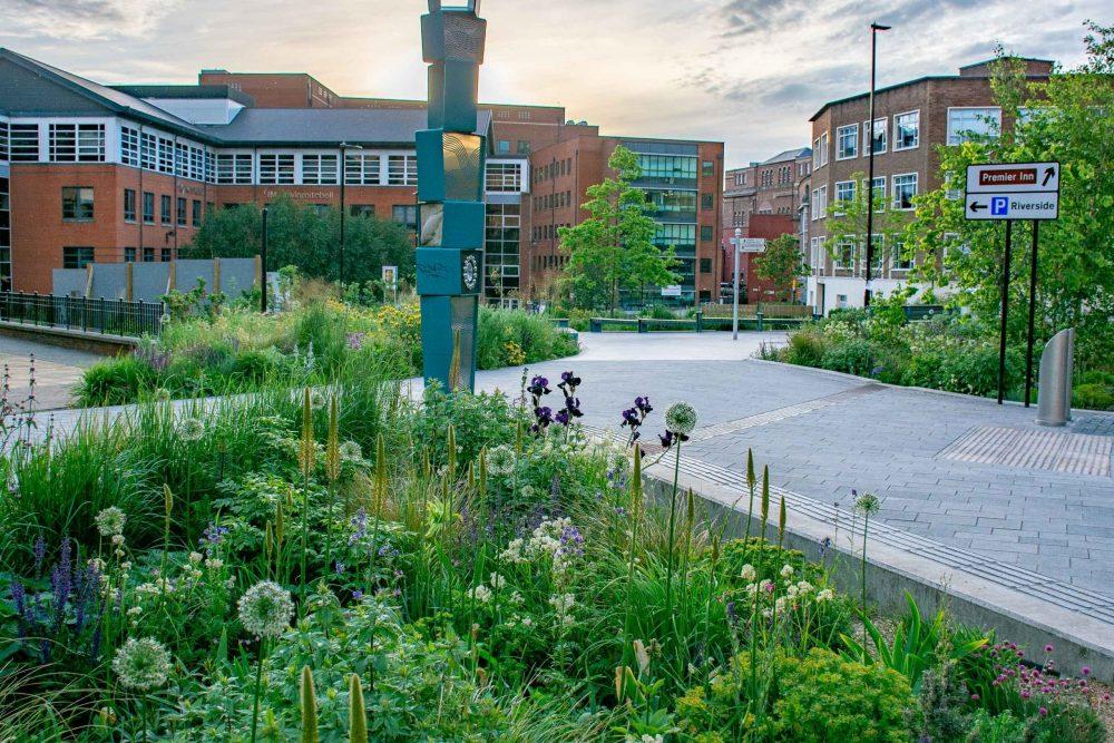 Sheffield Grey to Green scheme (image courtesy of Nigel Dunnett)